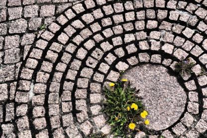 pavement-3477666_960_720